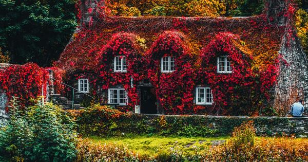 Je tu podzim – ideální čas na pravidelnou údržbu oken a dveří