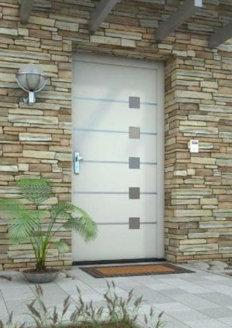 Plastové dveře Nelan