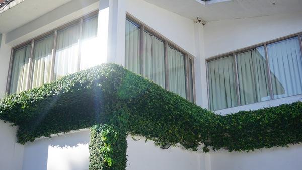 Jak správně pečovat o vaše okna?